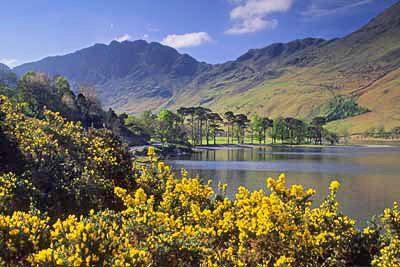 Sp21_Buttermere in Spring