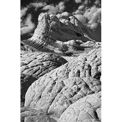305_Brain Rock Landscape